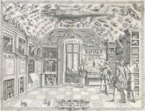 Engraving from Ferrante Imperato, Dell'Historia Naturale (Naples 1599)